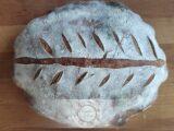 Os primeiros Pães com Fermento Natural- Opção Batedeira