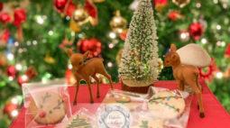 Bolachas de Natal (sem gengibre)